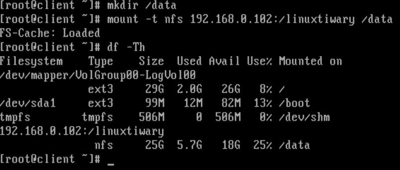 mount nfs data