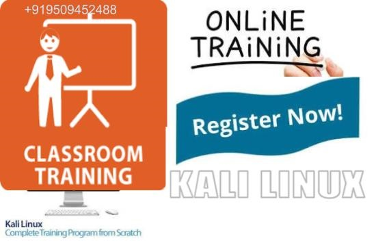 kali linux training