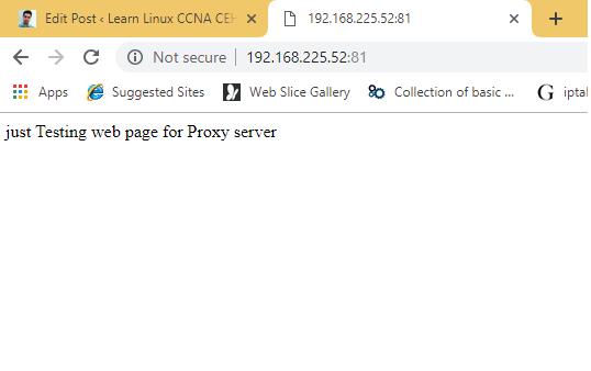 web proxy output